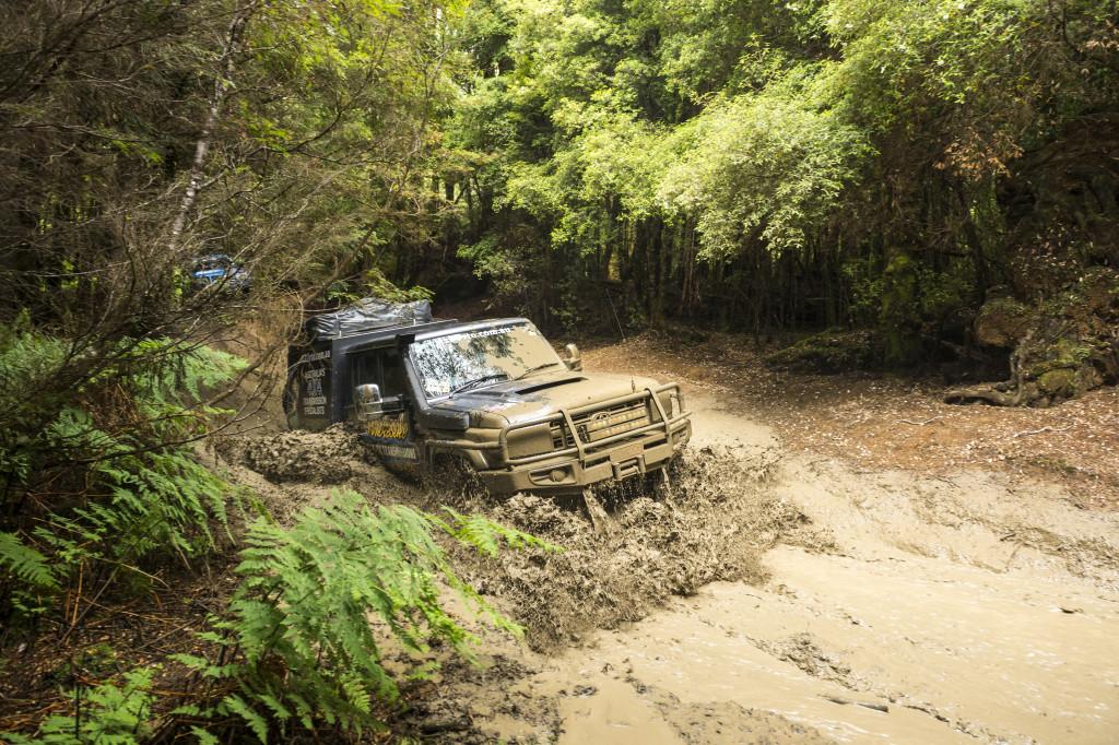 Tasmania Muddy Tracks