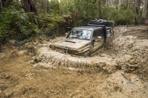Tasmania Mud Bog