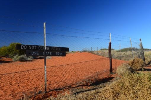 Simpson Desert Dog Fence